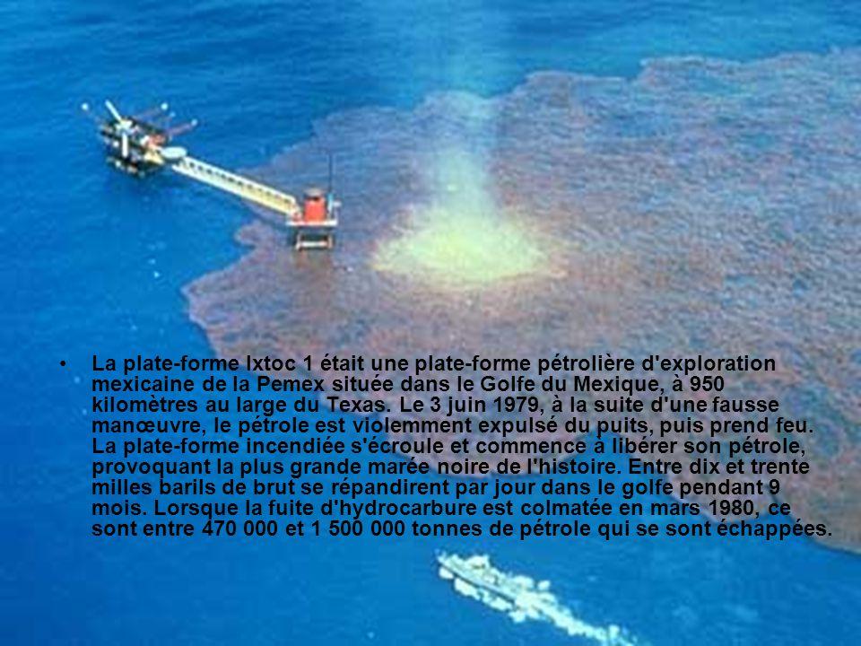 La plate-forme Ixtoc 1 était une plate-forme pétrolière d exploration mexicaine de la Pemex située dans le Golfe du Mexique, à 950 kilomètres au large du Texas.