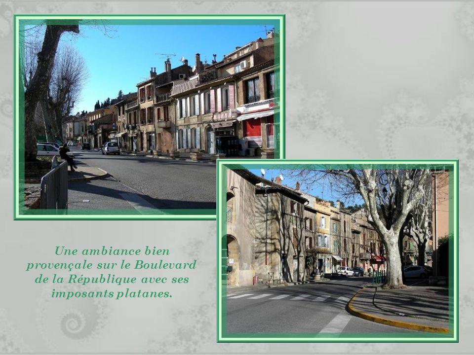 Une ambiance bien provençale sur le Boulevard de la République avec ses imposants platanes.