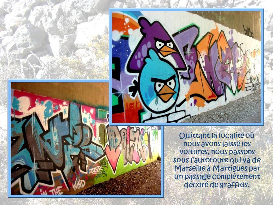 Quittant la localité où nous avons laissé les voitures, nous passons sous l'autoroute qui va de Marseille à Martigues par un passage complètement décoré de graffitis.