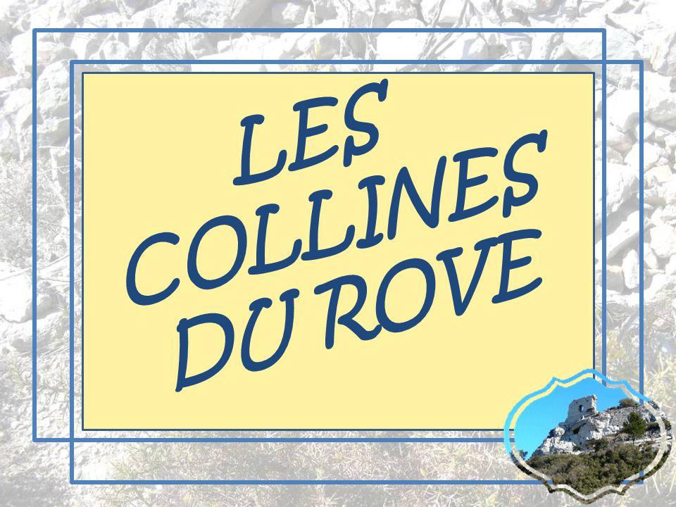 LES COLLINES DU ROVE