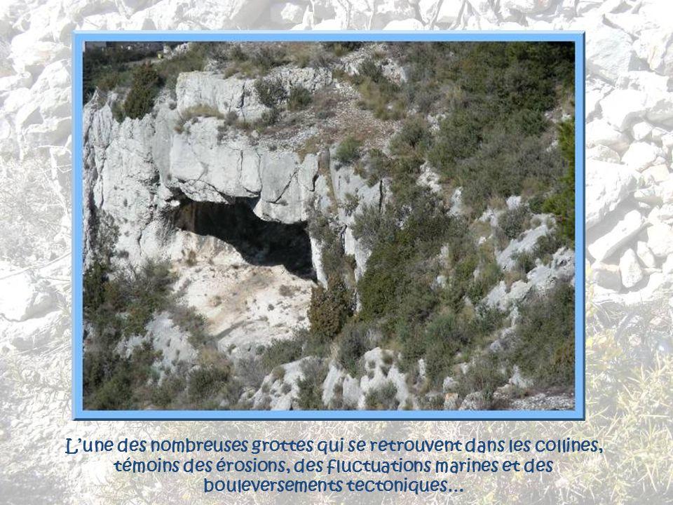 L'une des nombreuses grottes qui se retrouvent dans les collines, témoins des érosions, des fluctuations marines et des bouleversements tectoniques…