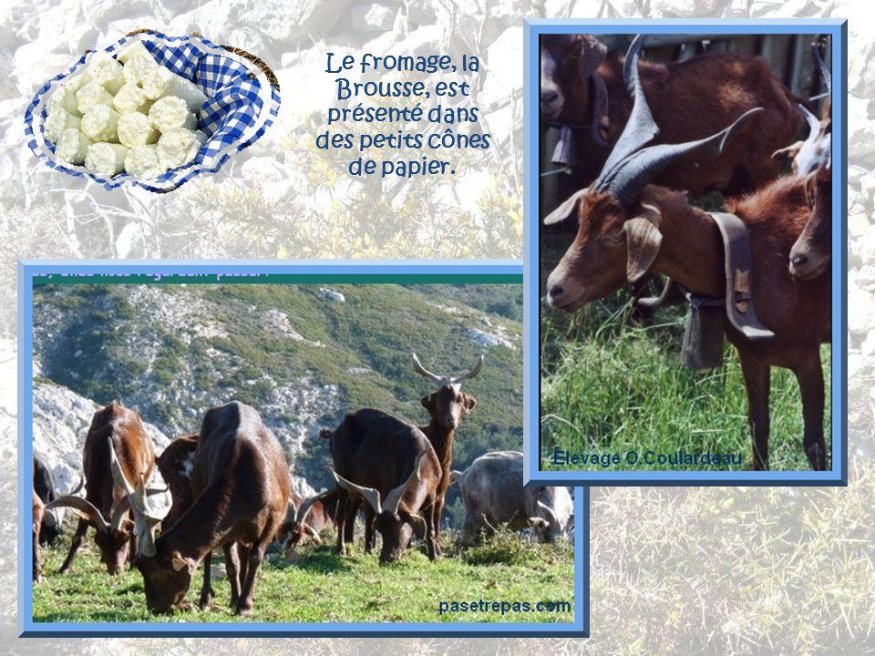 Le fromage, la Brousse, est présenté dans des petits cônes de papier.