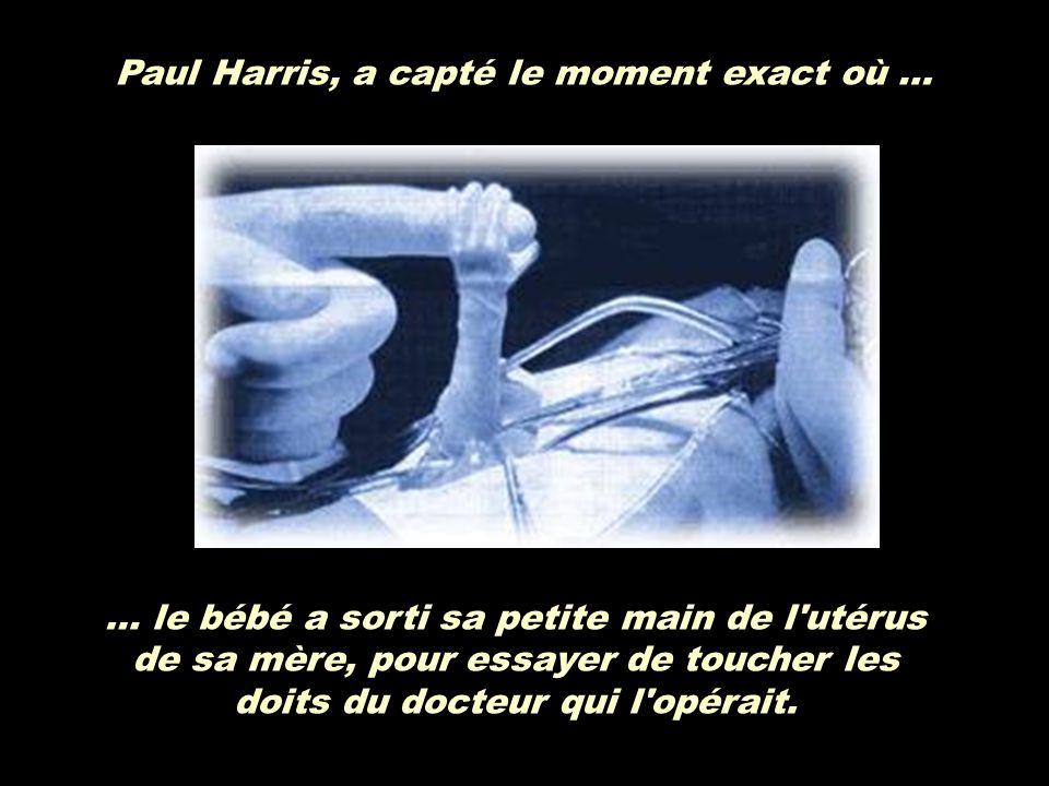 Paul Harris, a capté le moment exact où …