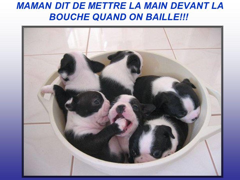 MAMAN DIT DE METTRE LA MAIN DEVANT LA BOUCHE QUAND ON BAILLE!!!