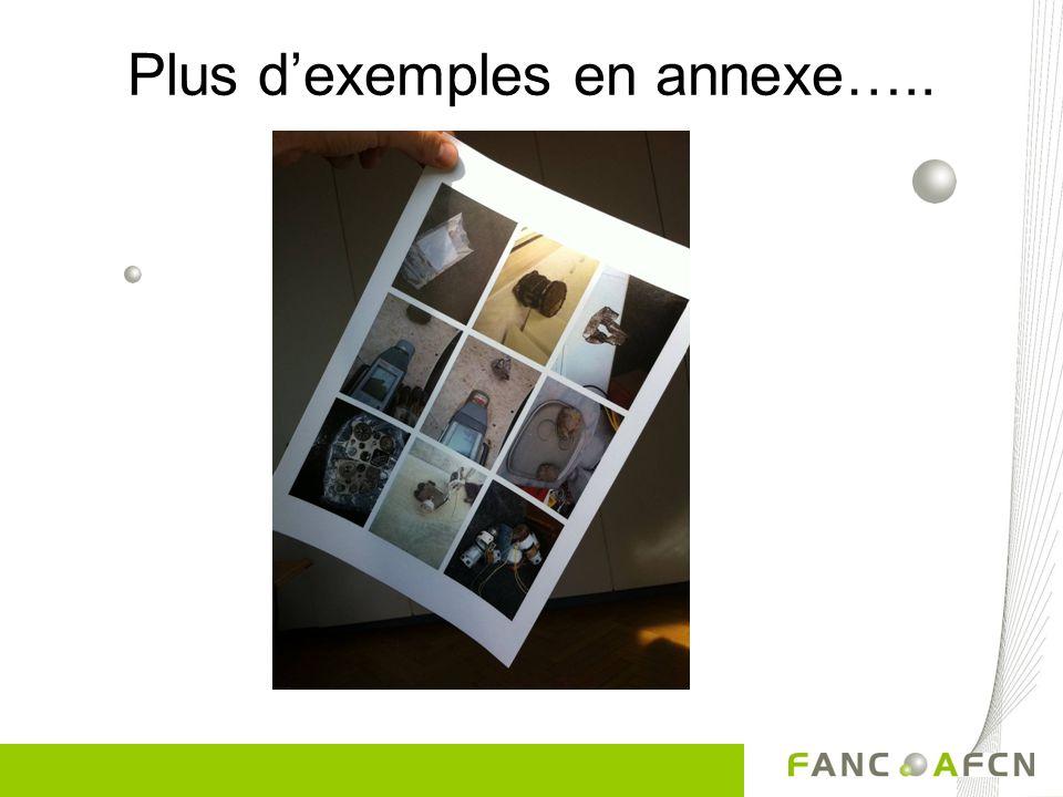 Plus d'exemples en annexe…..