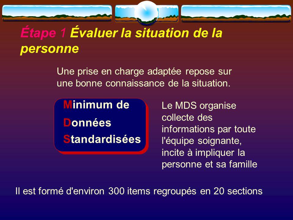 Minimum de Données Standardisées