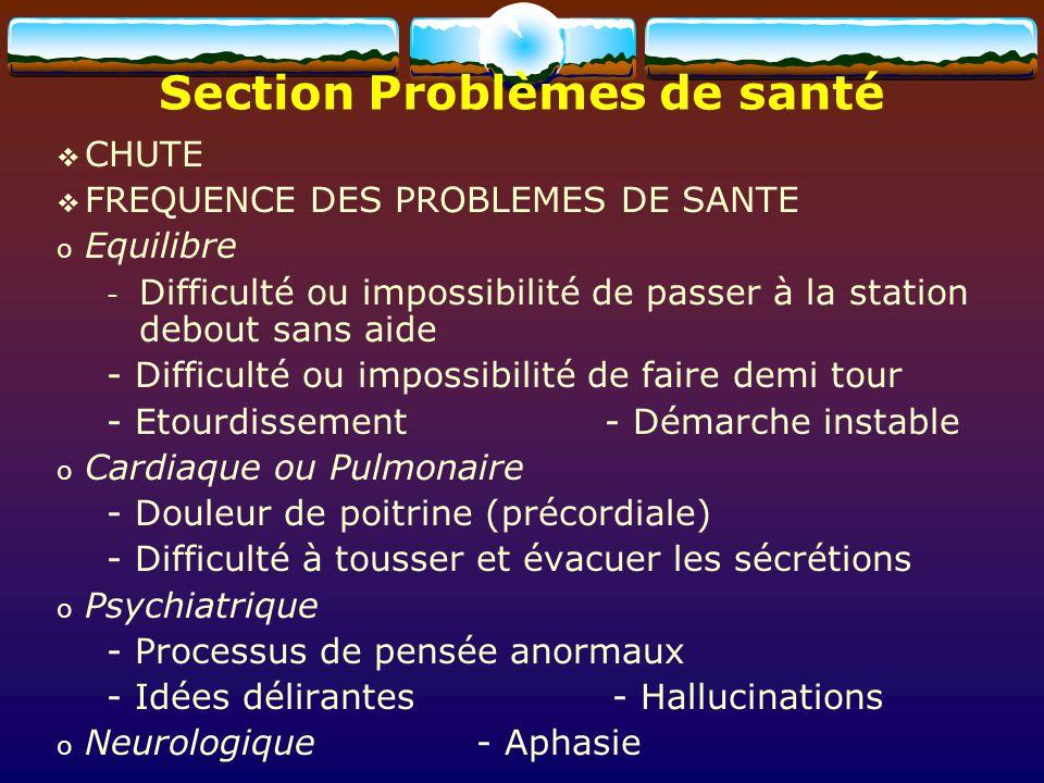 Section Problèmes de santé