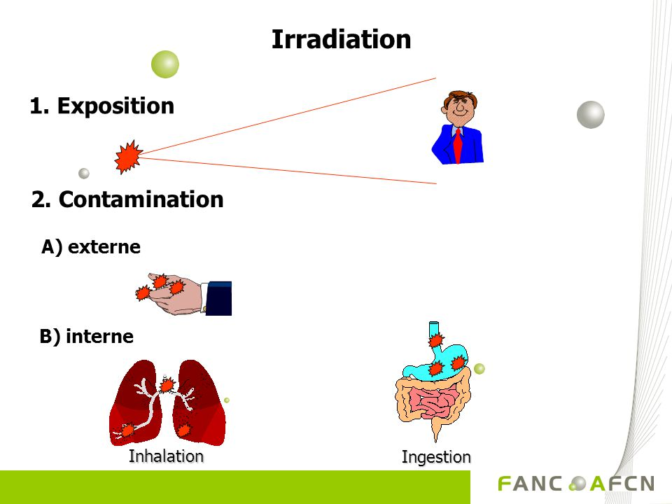 Irradiation 1. Exposition 2. Contamination A) externe B) interne