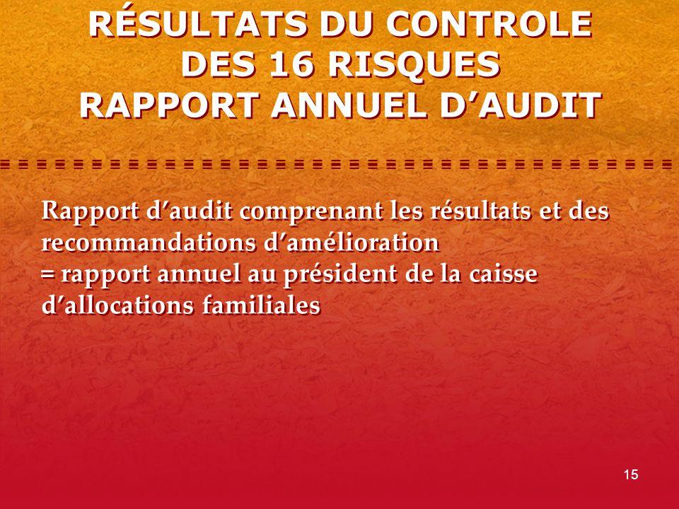 RÉSULTATS DU CONTROLE DES 16 RISQUES RAPPORT ANNUEL D'AUDIT
