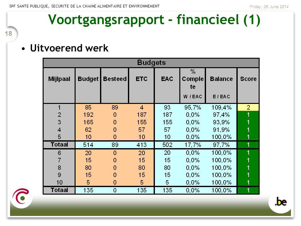 Voortgangsrapport - financieel (1)