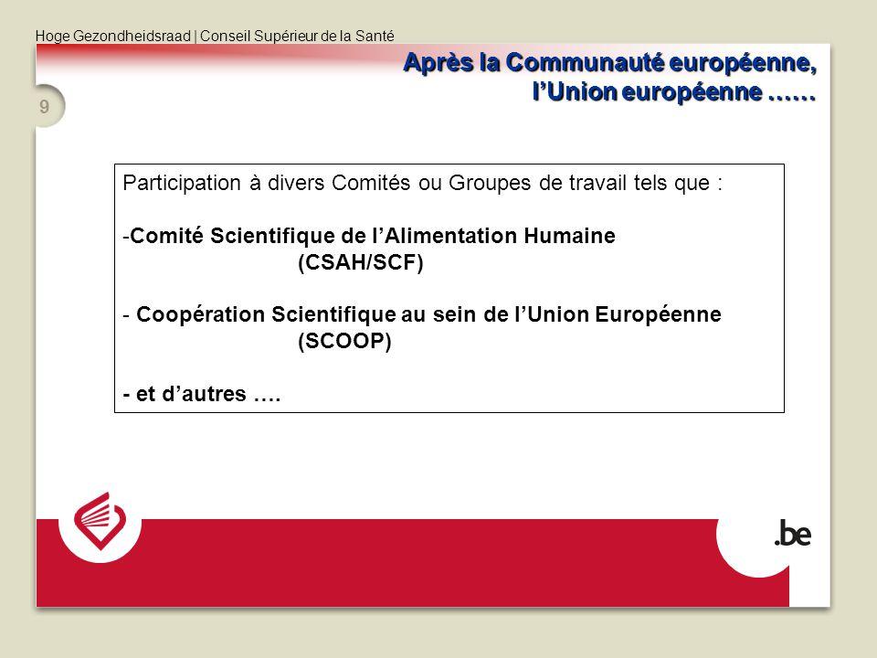 Après la Communauté européenne, l'Union européenne ……