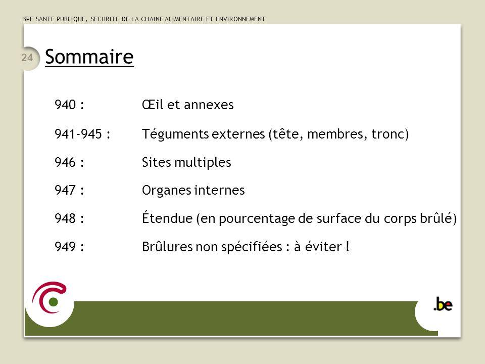 Sommaire 940 : Œil et annexes