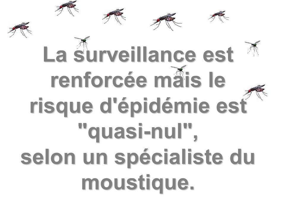La surveillance est renforcée mais le risque d épidémie est quasi-nul , selon un spécialiste du moustique.