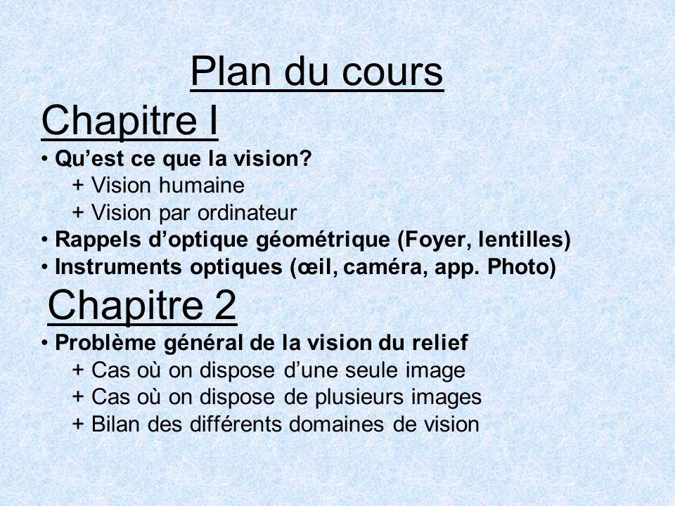 Plan du cours Chapitre I • Qu'est ce que la vision