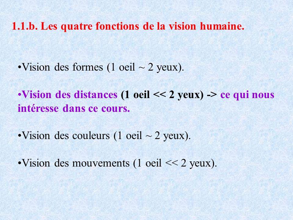 1.1.b. Les quatre fonctions de la vision humaine.