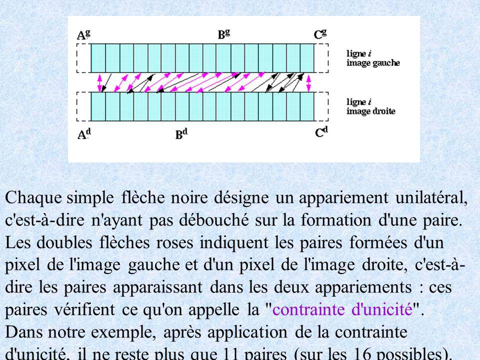 Chaque simple flèche noire désigne un appariement unilatéral, c est-à-dire n ayant pas débouché sur la formation d une paire.