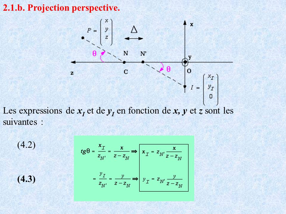 2.1.b. Projection perspective.