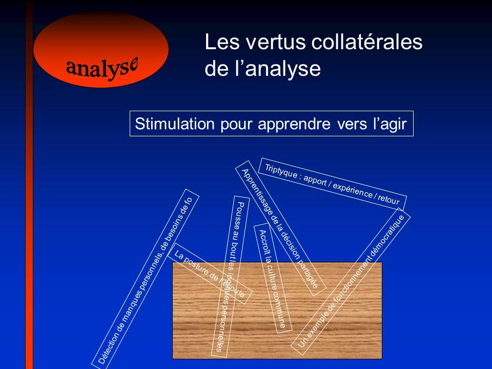 analyse Les vertus collatérales de l'analyse