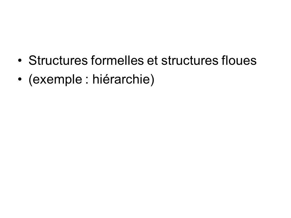 Structures formelles et structures floues