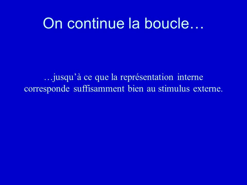 On continue la boucle… …jusqu'à ce que la représentation interne corresponde suffisamment bien au stimulus externe.