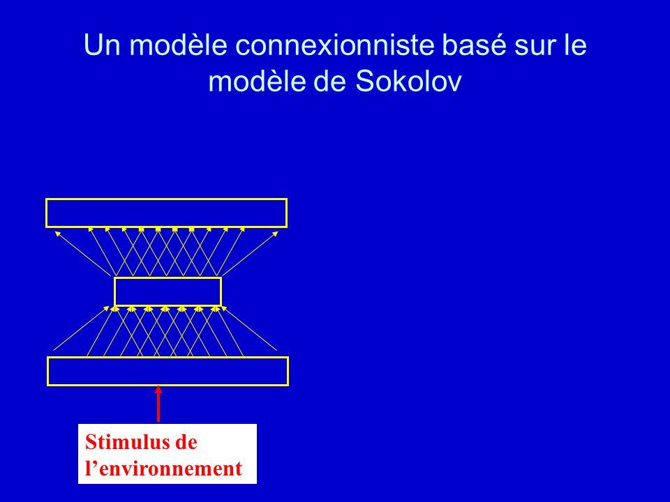 Un modèle connexionniste basé sur le modèle de Sokolov