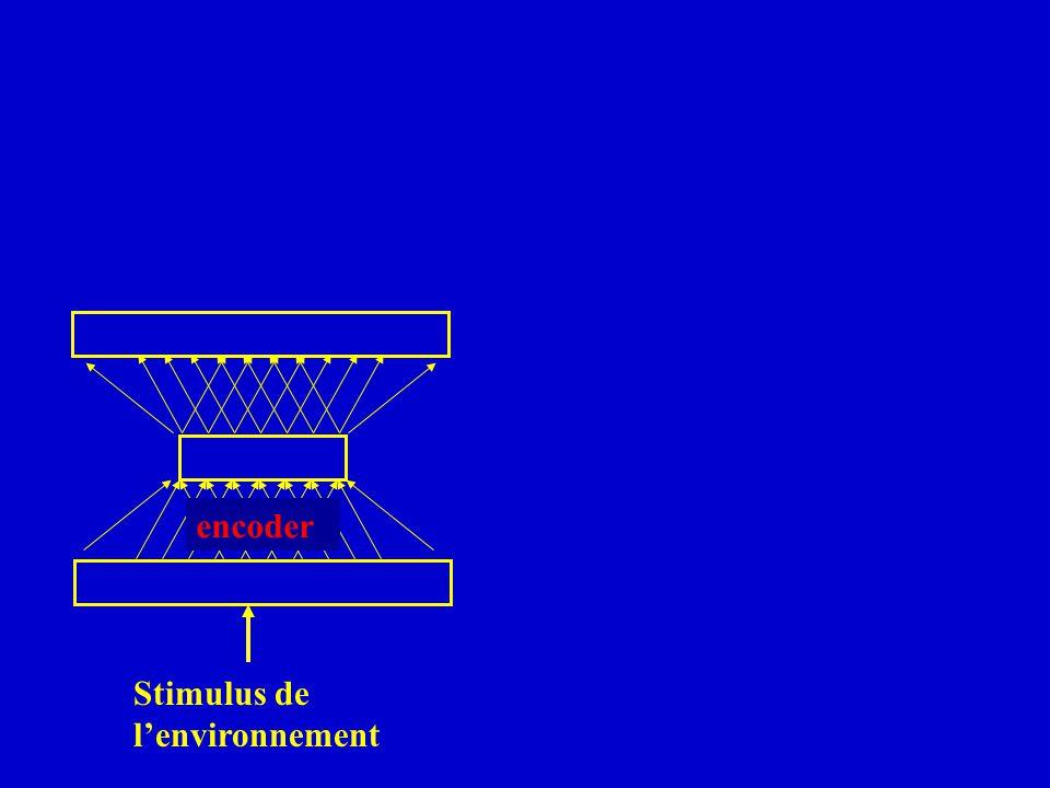 encoder Stimulus de l'environnement