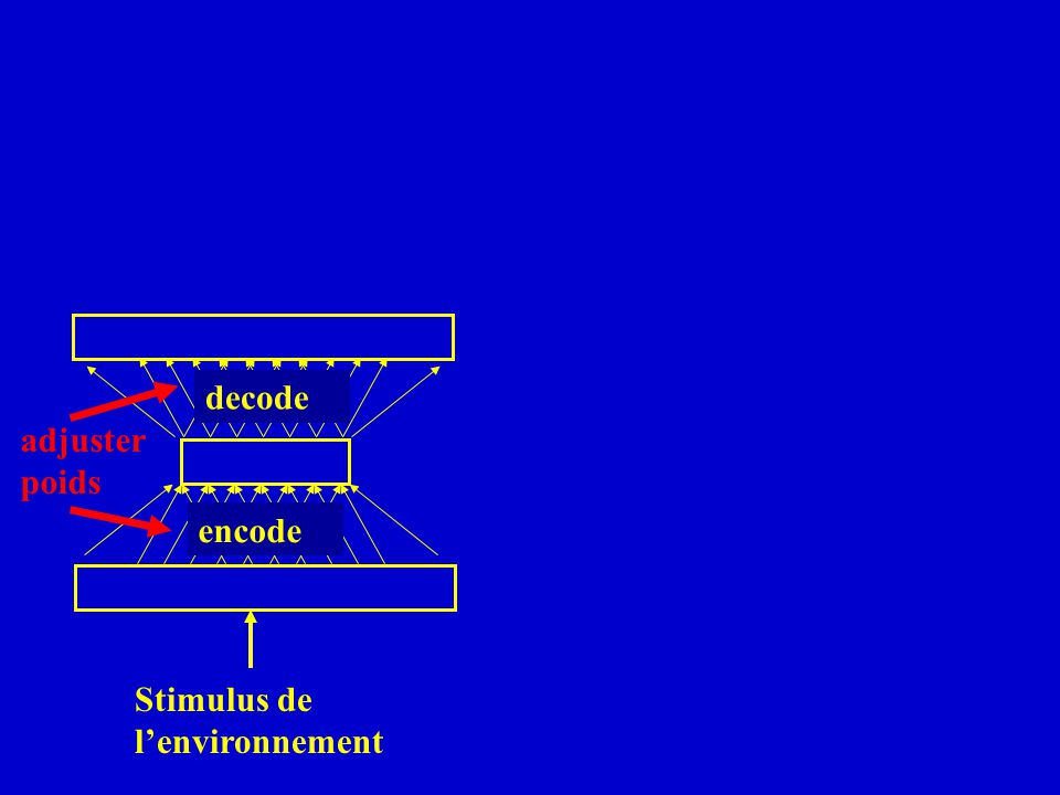 decode adjuster poids encode Stimulus de l'environnement