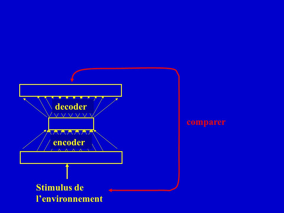 decoder comparer encoder Stimulus de l'environnement