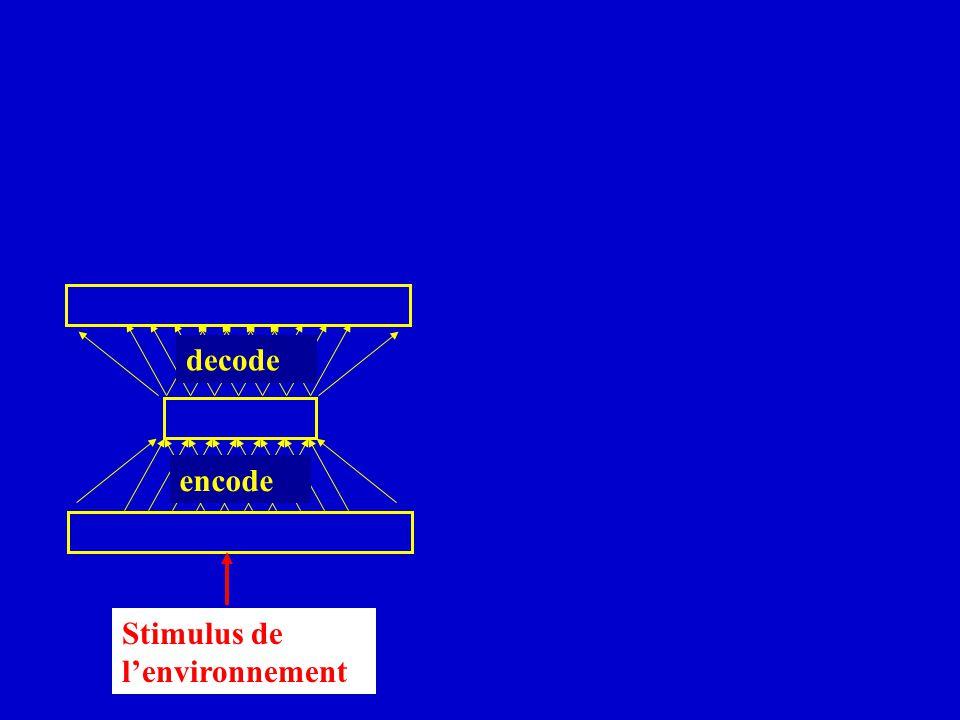 decode encode Stimulus de l'environnement