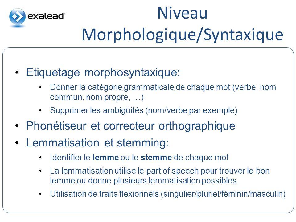 Niveau Morphologique/Syntaxique