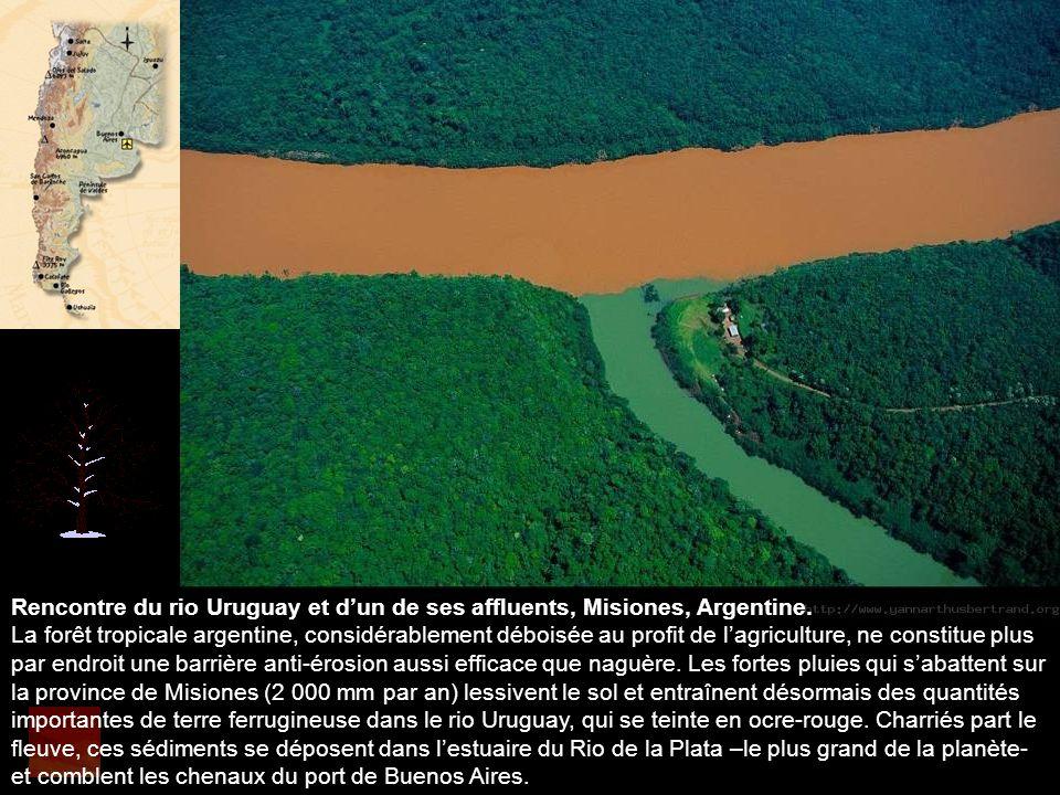 Rencontre du rio Uruguay et d'un de ses affluents, Misiones, Argentine