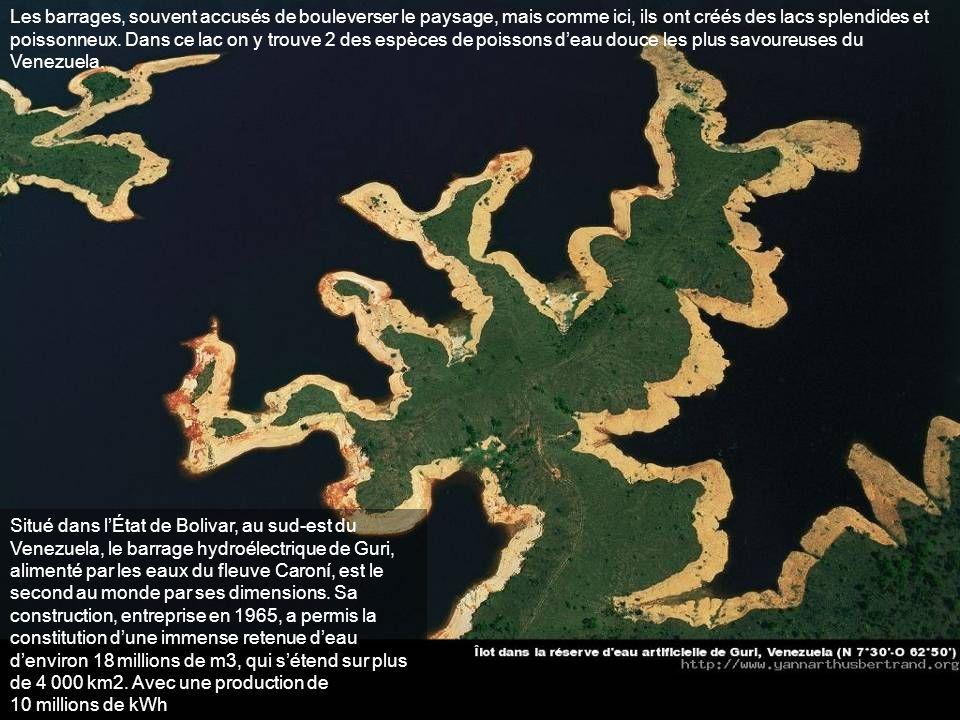 Les barrages, souvent accusés de bouleverser le paysage, mais comme ici, ils ont créés des lacs splendides et poissonneux. Dans ce lac on y trouve 2 des espèces de poissons d'eau douce les plus savoureuses du Venezuela.