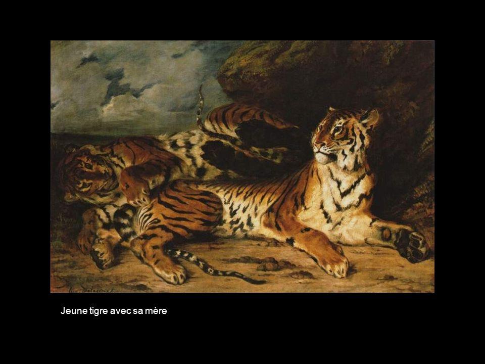 Jeune tigre avec sa mère