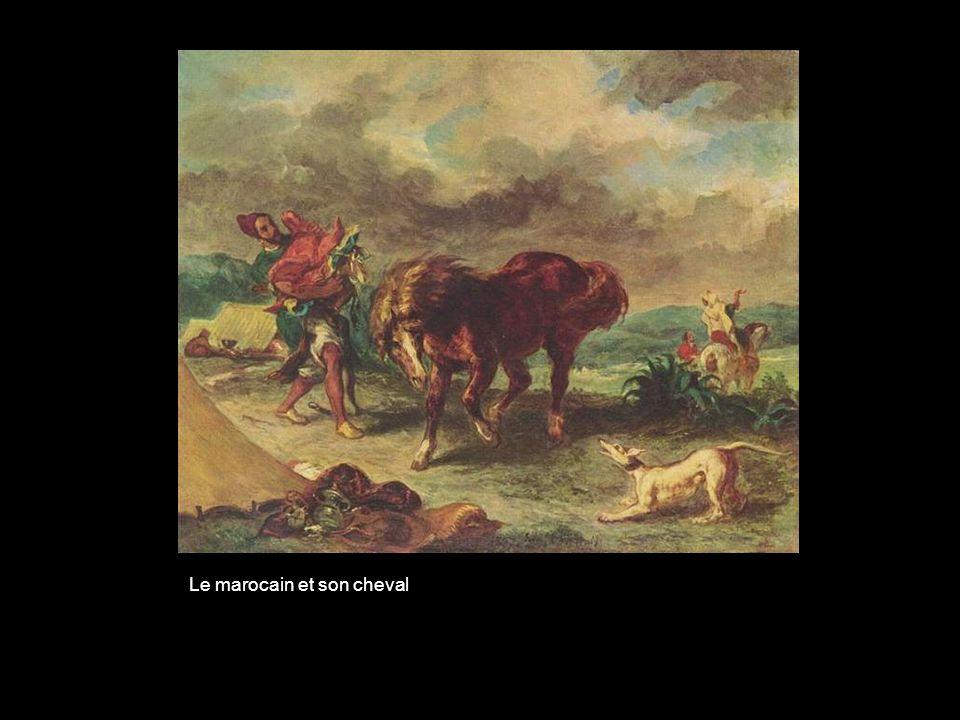 Le marocain et son cheval