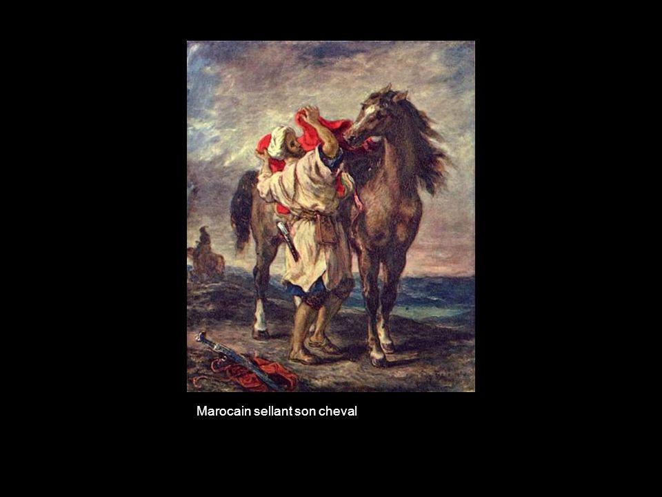 Marocain sellant son cheval