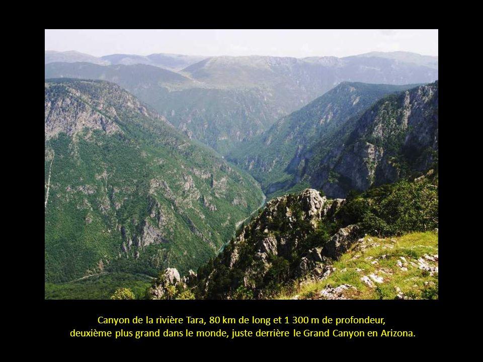 Canyon de la rivière Tara, 80 km de long et 1 300 m de profondeur,