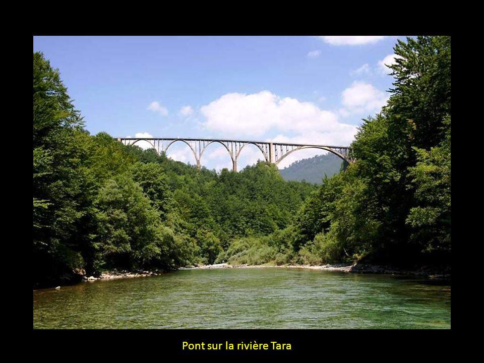 Pont sur la rivière Tara