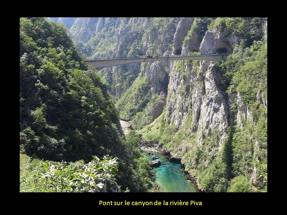 Pont sur le canyon de la rivière Piva