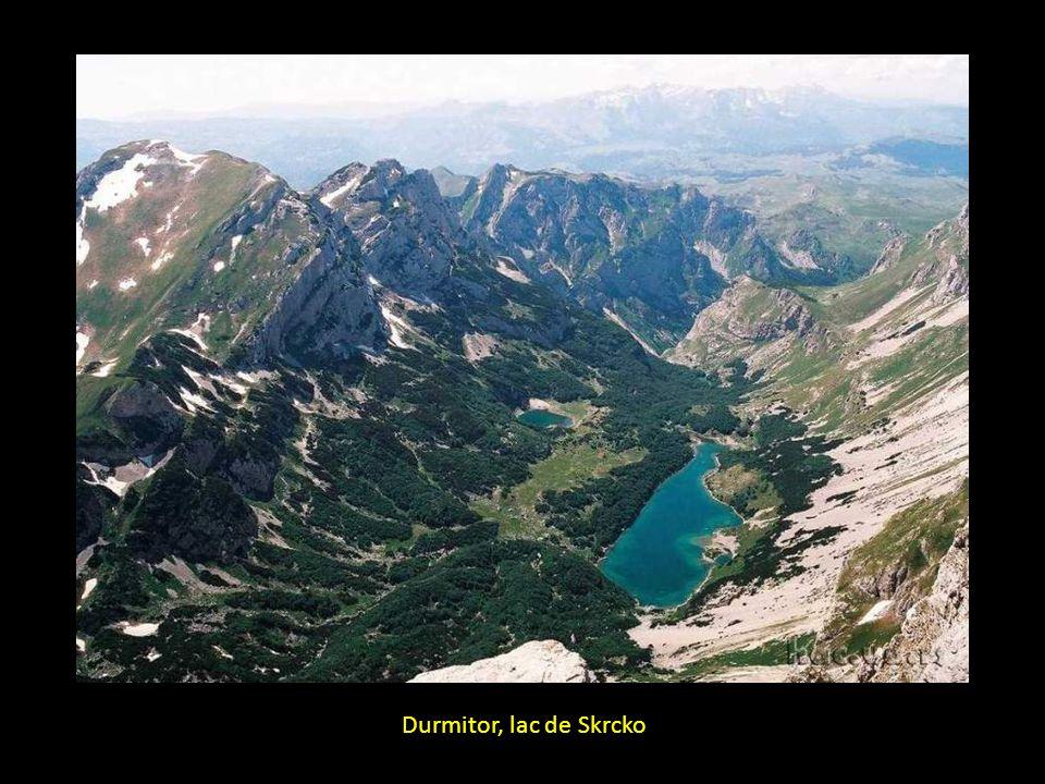 Durmitor, lac de Skrcko