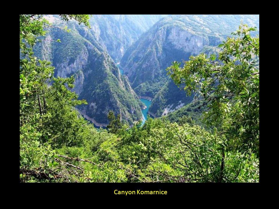 Canyon Komarnice