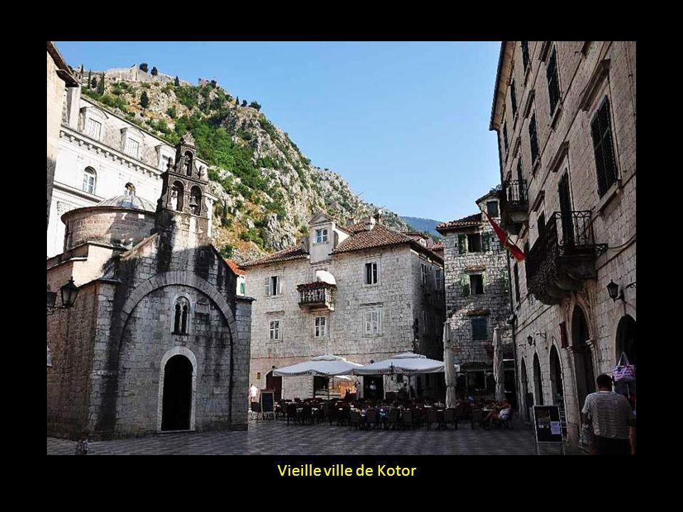 Vieille ville de Kotor
