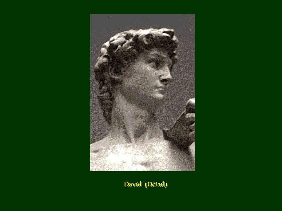 David (Détail)