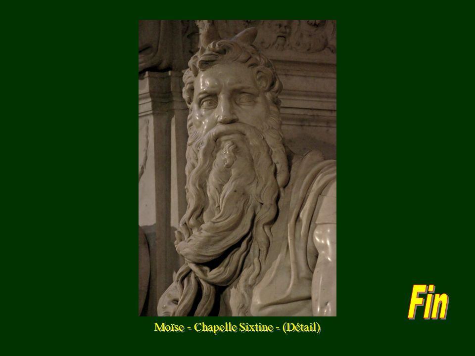 Moïse - Chapelle Sixtine - (Détail)