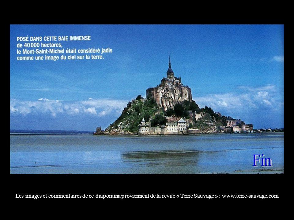 Fin Les images et commentaires de ce diaporama proviennent de la revue « Terre Sauvage » : www.terre-sauvage.com.