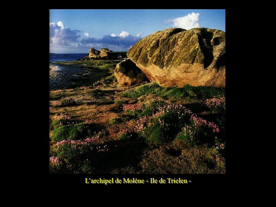 L'archipel de Molène - Ile de Trielen -