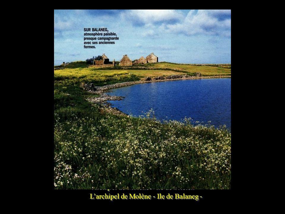 Archipel de Molène – Ile de Trielen