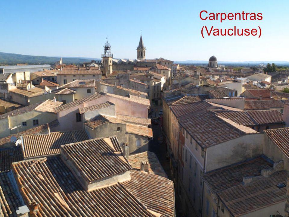 Carpentras (Vaucluse)