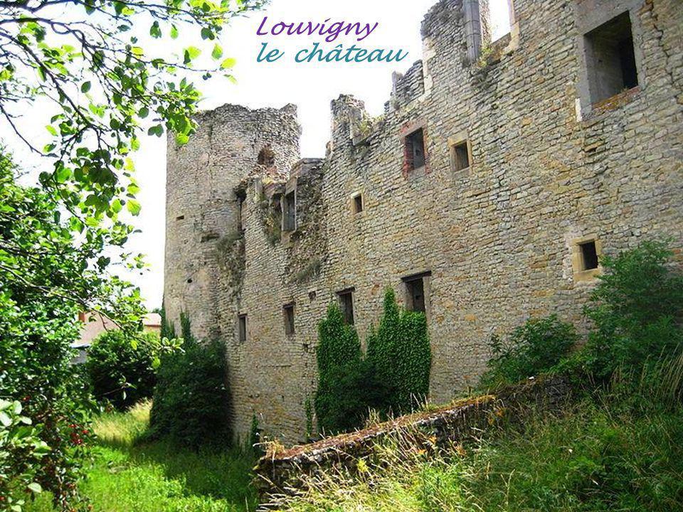 Louvigny le château