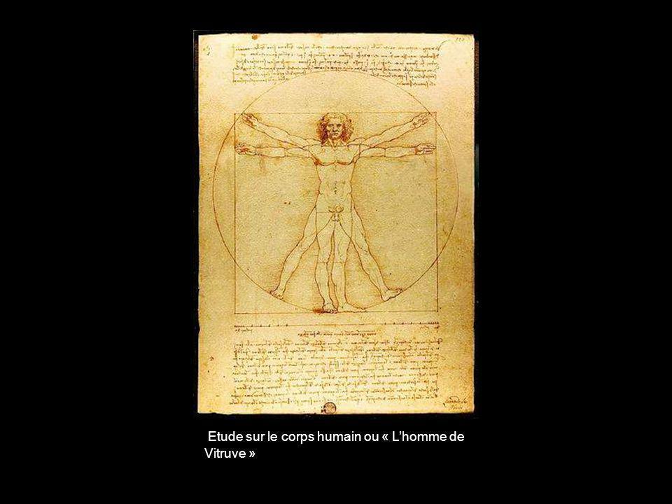 Etude sur le corps humain ou « L'homme de Vitruve »