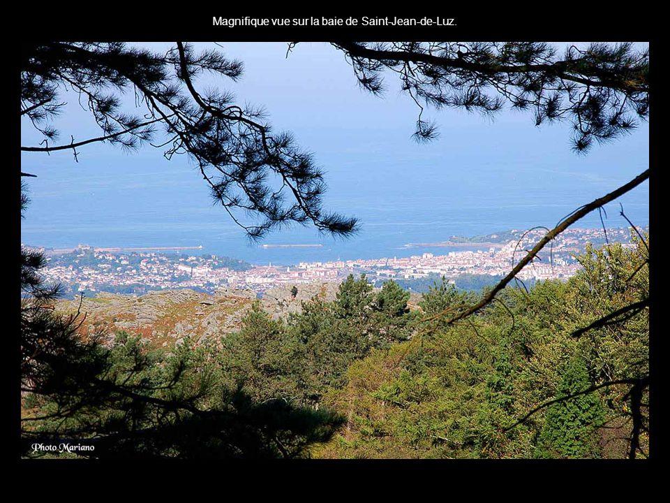 Magnifique vue sur la baie de Saint-Jean-de-Luz.